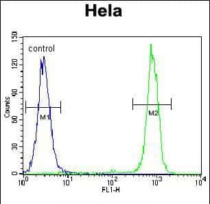 Carboxypeptidase B1 Antibody in Flow Cytometry (Flow)