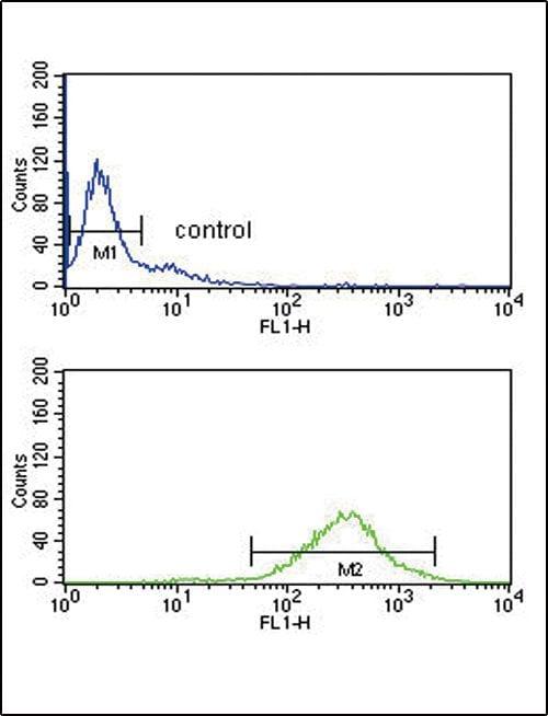GOT2 Antibody in Flow Cytometry (Flow)