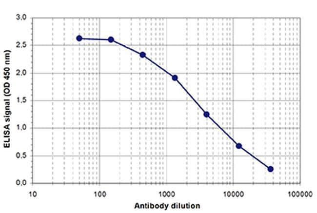 AGO1/AGO2 Antibody in ELISA (ELISA)