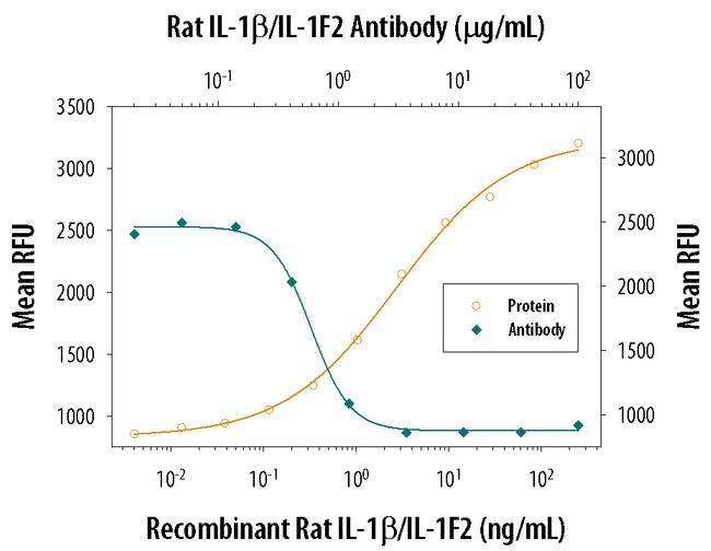 IL-1 beta Antibody in Neutralization (Neu)