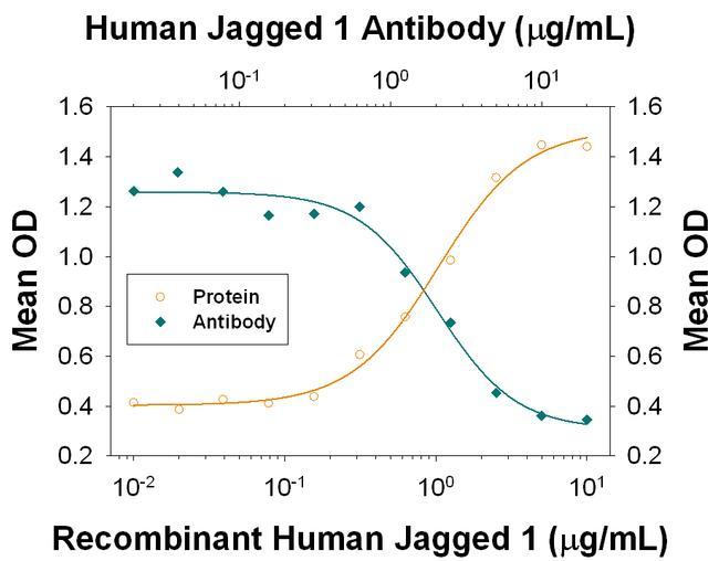 Jagged1 Antibody in Neutralization (Neu)