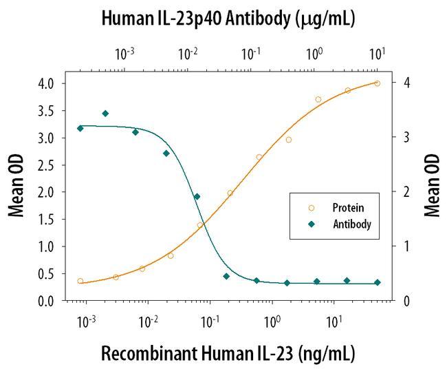 IL-12/IL-23 p40 Antibody in Neutralization