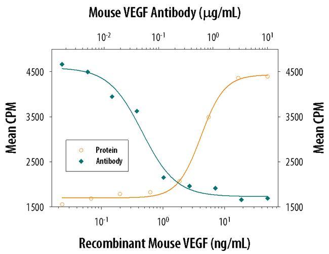 VEGF Antibody in Neutralization