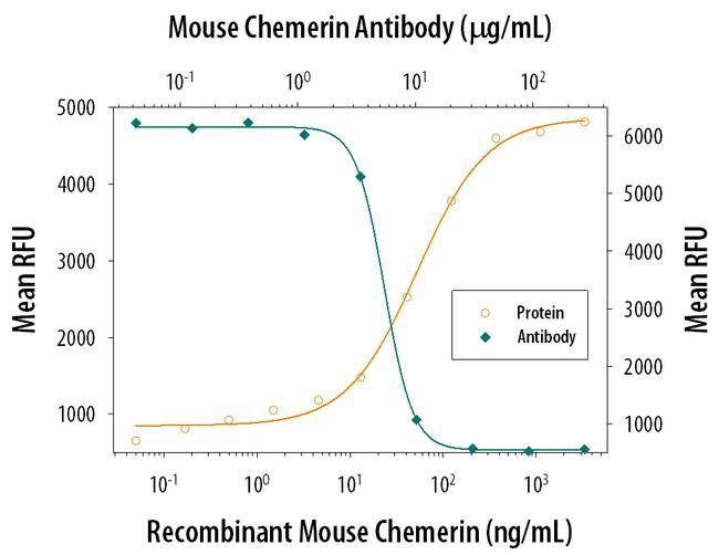 Chemerin Antibody in Neutralization