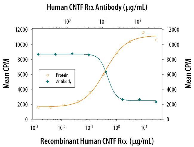 CNTFR Antibody in Neutralization (Neu)