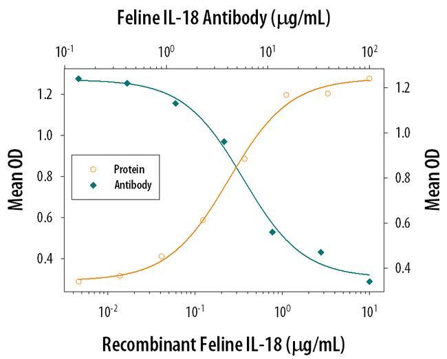 IL-18 Antibody in Neutralization (Neu)
