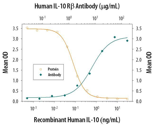 MIP-3 beta Antibody in Neutralization