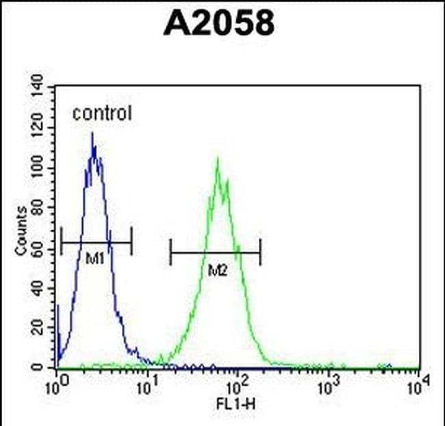 SOX4 Antibody in Flow Cytometry (Flow)