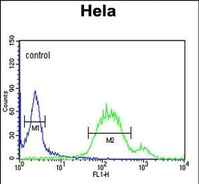 WNT5A Antibody in Flow Cytometry (Flow)