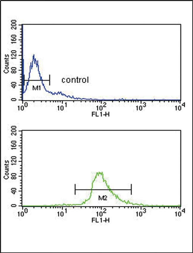 DCT Antibody in Flow Cytometry (Flow)