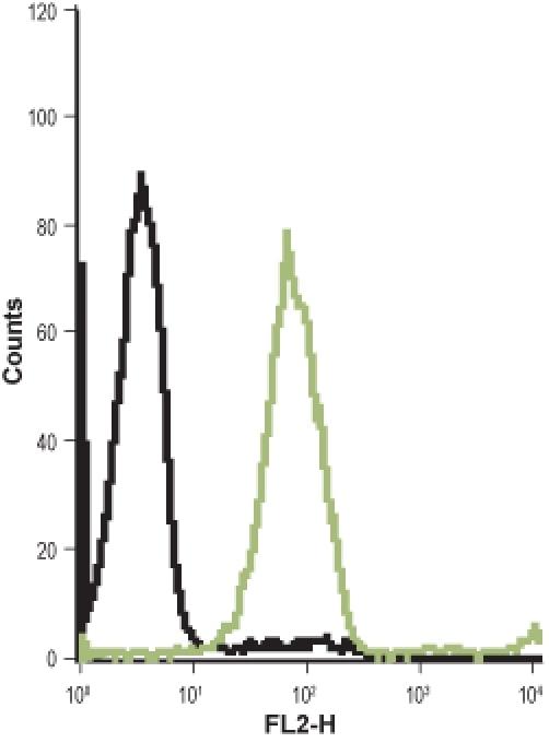 CCKBR (extracellular) Antibody in Flow Cytometry (Flow)