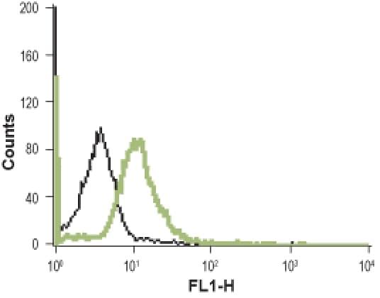 NTSR1 (extracellular) Antibody in Flow Cytometry (Flow)