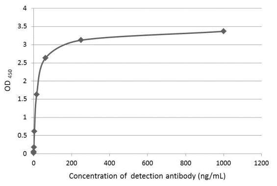 Axl Antibody in ELISA (ELISA)