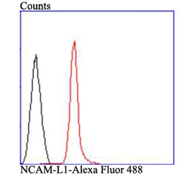 CD171 (L1CAM) Antibody in Flow Cytometry (Flow)