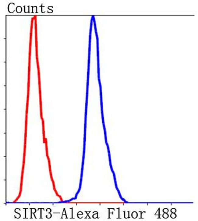 SIRT3 Antibody in Flow Cytometry (Flow)