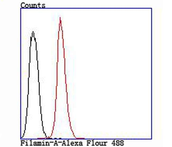 Filamin A Antibody in Flow Cytometry (Flow)