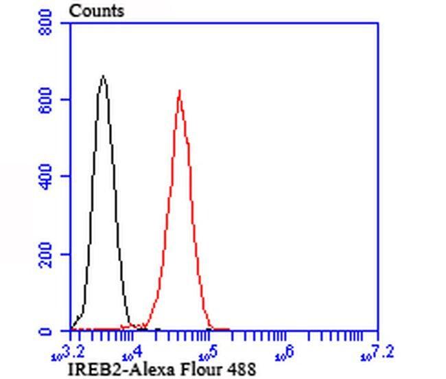 IREB2 Antibody in Flow Cytometry (Flow)