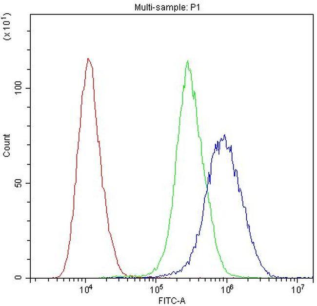 MYPT1 Antibody in Flow Cytometry (Flow)