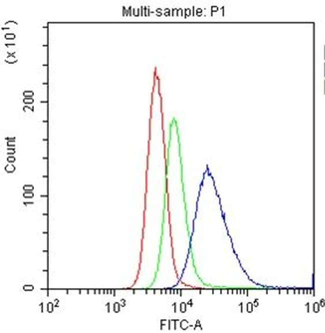CD20 Antibody in Flow Cytometry (Flow)