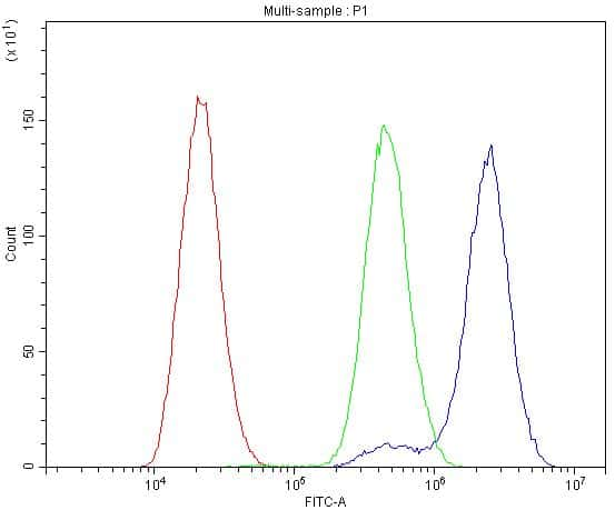 BDNF Antibody in Flow Cytometry (Flow)