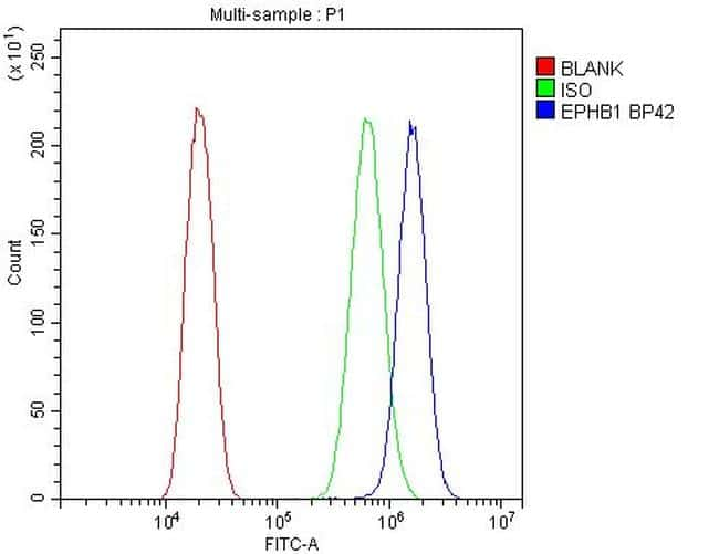 EphB1 Antibody in Flow Cytometry (Flow)