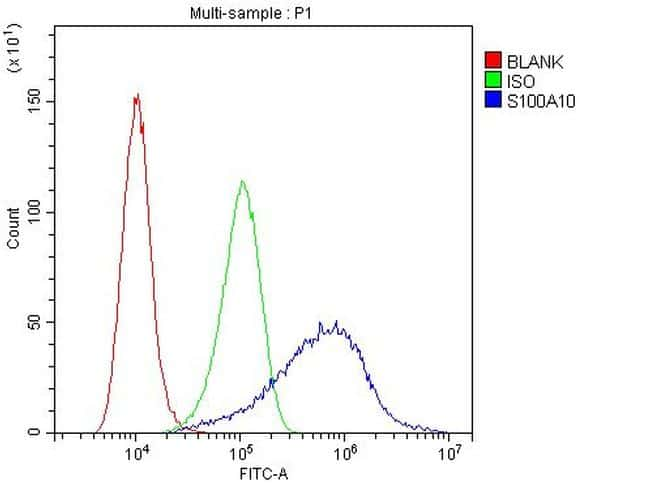S100A10 Antibody in Flow Cytometry (Flow)
