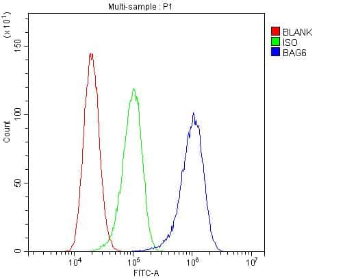 BAG6 Antibody in Flow Cytometry (Flow)