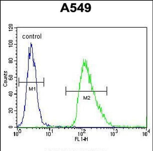 IEX-1 Antibody in Flow Cytometry (Flow)