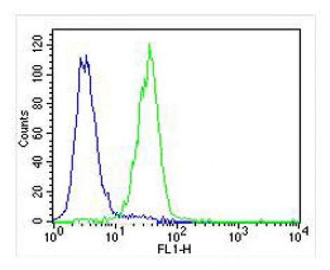 PLOD1 Antibody in Flow Cytometry (Flow)