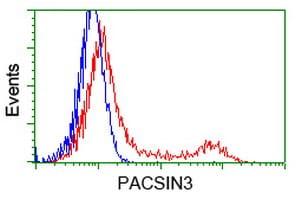 PACSIN3 Antibody in Flow Cytometry (Flow)