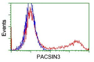 PACSIN3 Antibody in Flow Cytometry (Flow)
