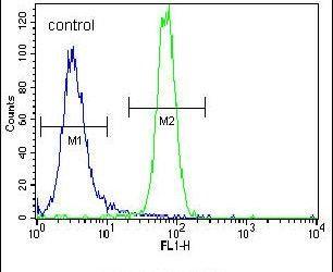 Parkin Antibody in Flow Cytometry (Flow)