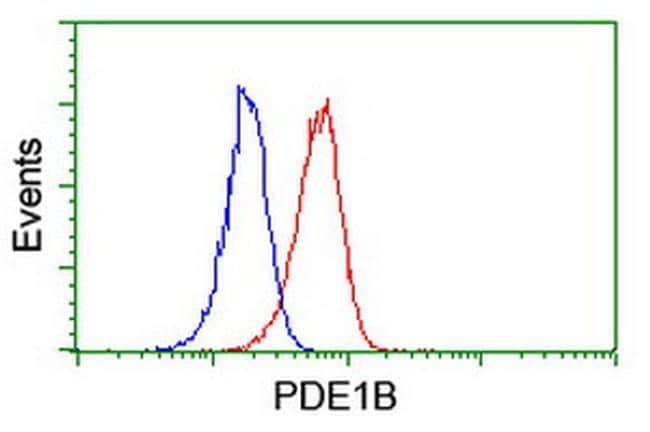 PDE1B Antibody in Flow Cytometry (Flow)