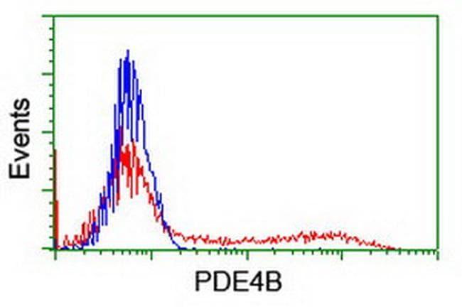 PDE4B Antibody in Flow Cytometry (Flow)