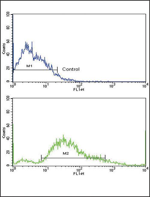 PDGFRB Antibody in Flow Cytometry (Flow)