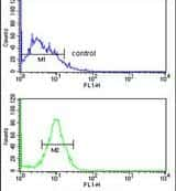 PEX14 Antibody in Flow Cytometry (Flow)