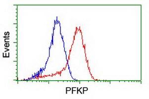 PFKP Antibody in Flow Cytometry (Flow)