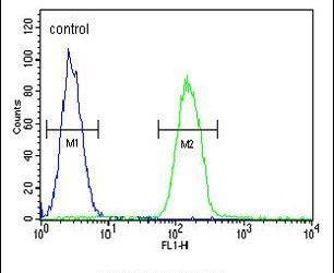 PHLPP2 Antibody in Flow Cytometry (Flow)