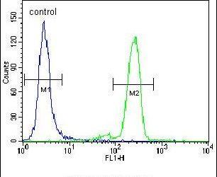 PML Antibody in Flow Cytometry (Flow)