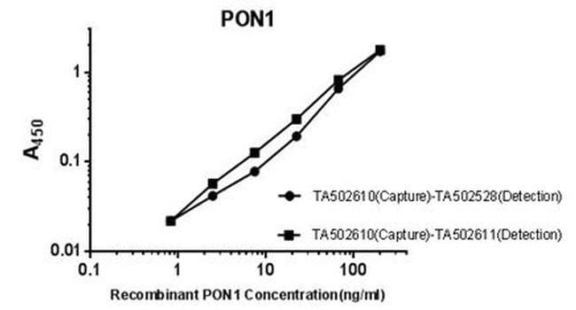 PON1 Antibody in ELISA (ELISA)