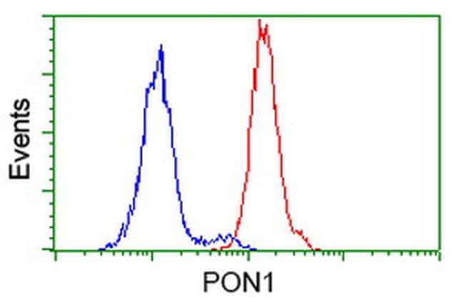 PON1 Antibody in Flow Cytometry (Flow)