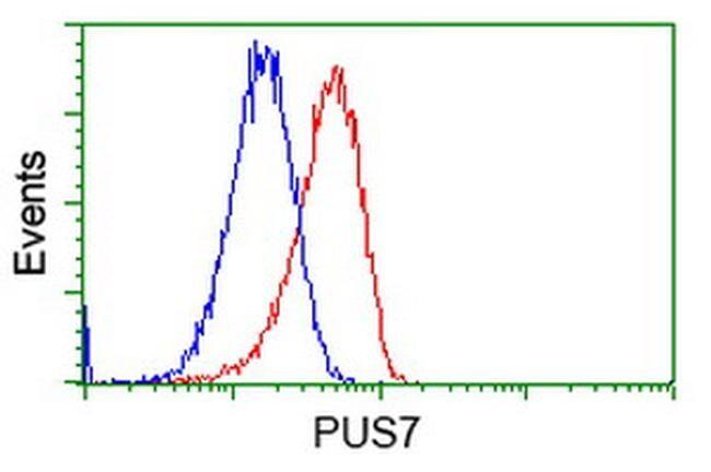 PUS7 Antibody in Flow Cytometry (Flow)