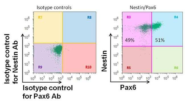 PAX6 Antibody in Flow Cytometry (Flow)