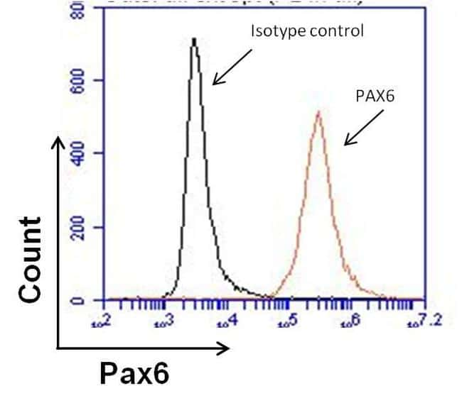 PAX6 Antibody in Flow Cytometry (Flow)