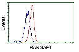 RANGAP1 Antibody in Flow Cytometry (Flow)