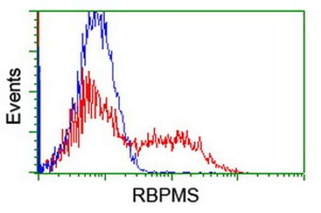 RBPMS Antibody in Flow Cytometry (Flow)