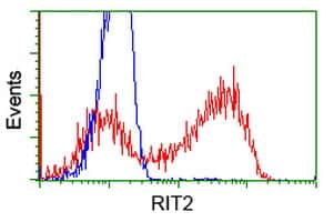 RIT2 Antibody in Flow Cytometry (Flow)
