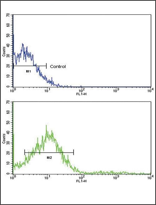 ROR2 Antibody in Flow Cytometry (Flow)