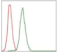 RPA70 Antibody in Flow Cytometry (Flow)