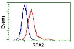 RPA2 Antibody in Flow Cytometry (Flow)